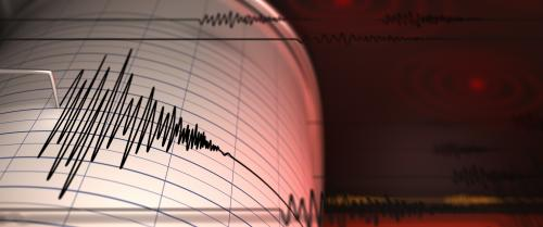 19 quakes strike Nicobar Islands within 10 hours