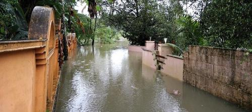 Amicus curiae flags sudden discharge from dams, lack of forecasting for Kerala floods