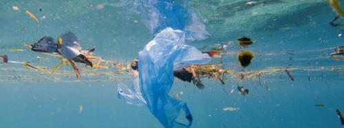 Nordic nations call for a global treaty to reduce marine plastic pollution