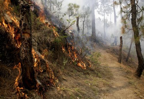 उत्तराखंड के जंगलों में लगी आग, 30 घटनाओं में 54 हजार का नुकसान