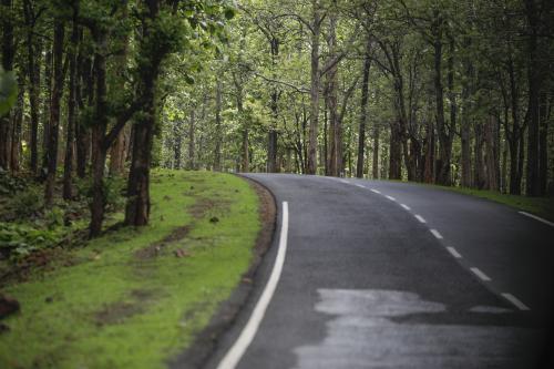 कुल वन क्षेत्र बढ़ा, लेकिन सामान्य घना वन क्षेत्र घटा