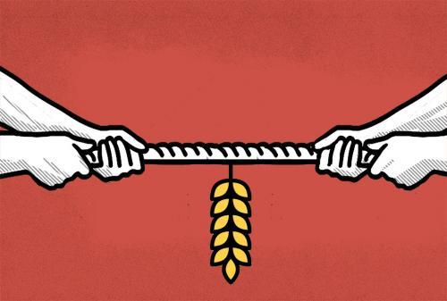 कॉरपोरेट के नियंत्रण में खेती से किसका भला होगा
