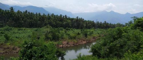 जंगलों को बाढ़ से बचाने के लिए नदियों की सफाई की गुहार