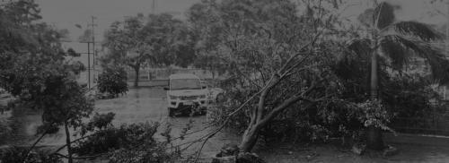 Cyclone Fani: Five days on, Odisha still far from normal