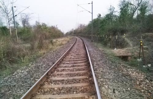 Third railway line through Palamu Tiger Reserve threatens to increase human-elephant conflict