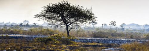 Climate change knowledge management in India