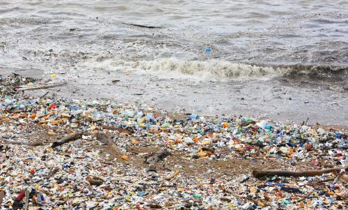 Microplastic pollution load on seashore linked with population size of coastal cities