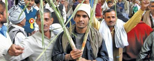 Sugarcane farmers caught in a maze of brotherhood of brokers