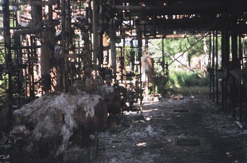 COVID-19: Deaths of 6 Bhopal gas survivors turn spotlight on healthcare malady