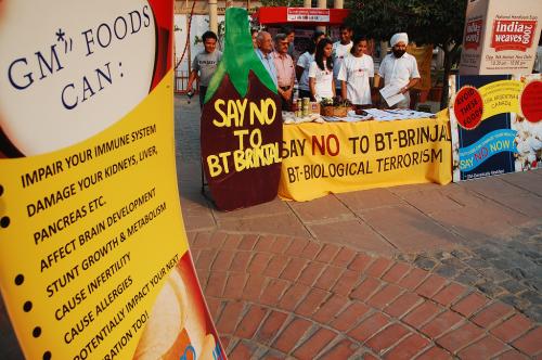 जानिए, कैसे जीएम फसलों ने भारत में घुसपैठ की