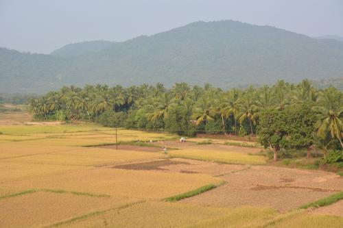 Goa's first white paper on livelihood can help in effective state planning