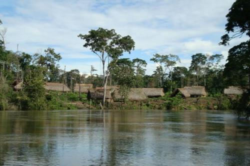 Homes of indigenous Yanomami in Venezuela. Photo: Wataniba Socio-environmental Work Group for the Amazon.