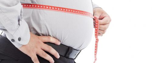 This chemical controls whether you would be fat or fatter