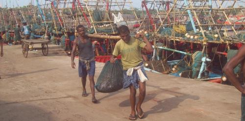 Odisha may ban catching under-sized fish