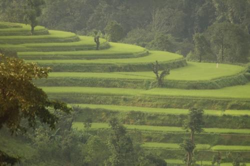 17 साल से लगातार कृषि क्षेत्र में कम हो रहा है सरकारी निवेश