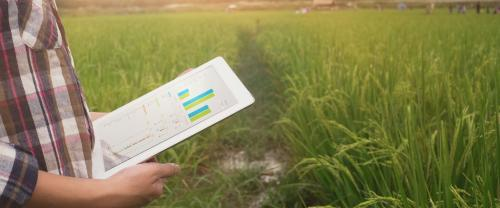 How big data can boost agricultural growth