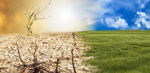 2019 का हर महीना बना रहा रिकॉर्ड, चार सबसे गर्म महीने
