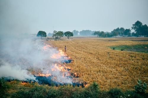 Here is a solution for crop residue burning problem