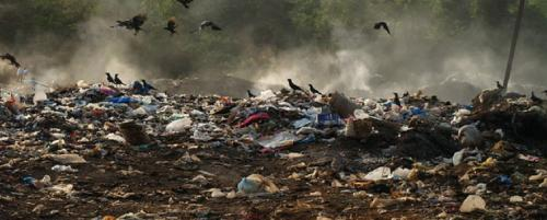 Sri Lanka Court of Appeal to intervene in UK waste trade scam