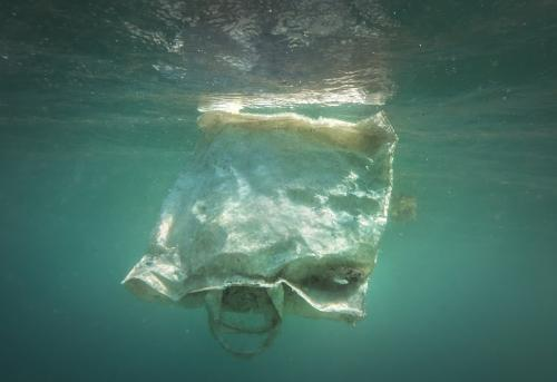 पीने के पानी में बढ़ रहा है माइक्रोप्लास्टिक : डब्ल्यूएचओ