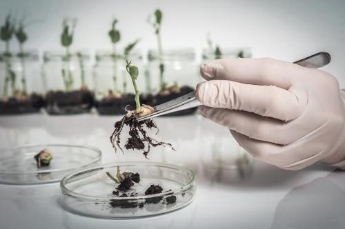 रीढ़विहीन कृषि शिक्षा -2: इंजीनियरिंग शिक्षा जैसे न हो जाएं हालात!