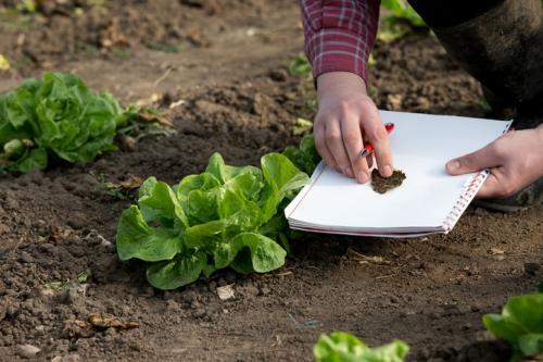 रीढ़विहीन कृषि शिक्षा -3: रिसर्च संस्थानों में खाली पड़ी हैं सीटें
