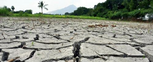 UNCCD CoP: India still unclear about its degradation target