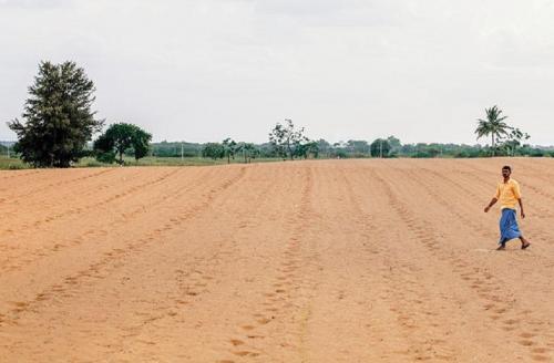 बंजर होता भारत -एक: 30 प्रतिशत जमीन पर नहीं उग रहा अनाज का एक भी दाना