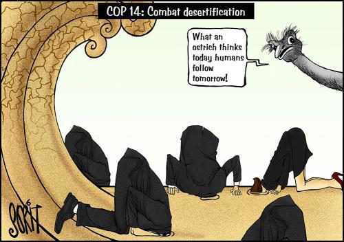 COP 14: Comabat desertification