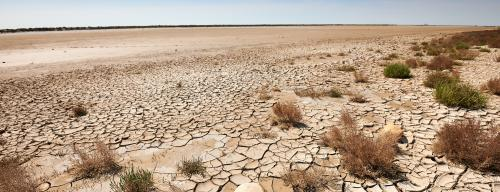 Lexical conundrum: Desertification does not allude to deserts
