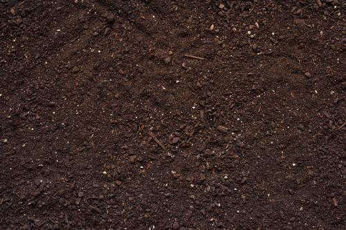 UNCCD CoP 14: Report on Soil Organic Carbon released