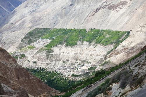 Desertification in India: Less snow, more rain ail Himachal Pradesh's Kinnaur