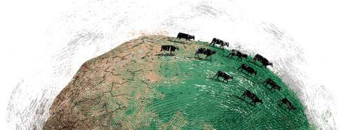 Desertification and grazing: Quash the dogma