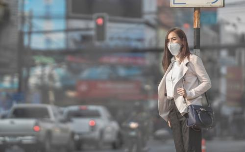 Air pollution linked with cardiovascular diseases: Study