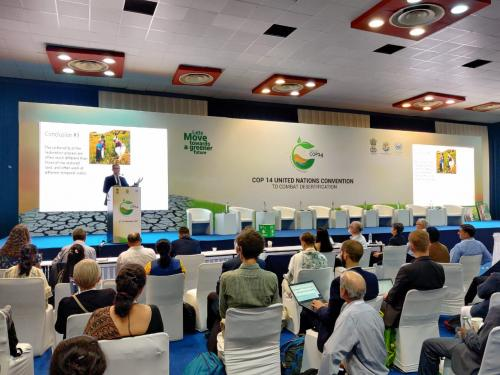 Local govts must be empowered to act against desertification: Developing nations