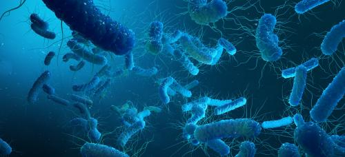 Scientists propose Controlled Human Infection Model studies
