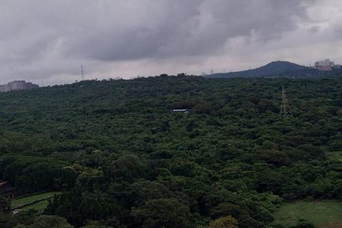 आरे मामला: क्या बदल सकती है वन भूमि की परिभाषा?