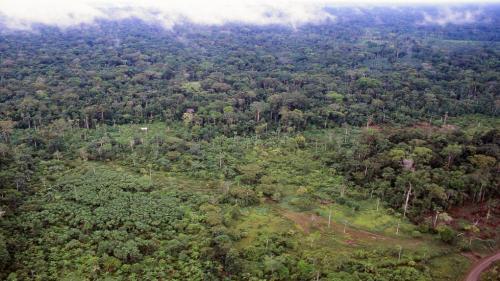'Amazon region under threat from oil drilling, mining'