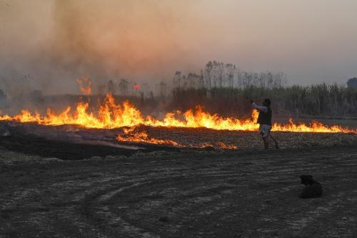पराली जलाने से हर साल हो रहा है 2 लाख करोड़ रुपए का नुकसान