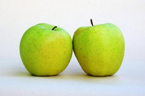 हिमालयी क्षेत्रों से विलुप्त हो रही है सेब की उम्दा दो प्रजातियां, जलवायु परिवर्तन का असर