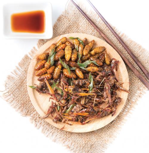 आहार संस्कृति: भारत के 10 राज्यों में चाव से खाए जाते हैं कीड़े, होते हैं पौष्टिक