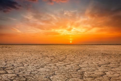 अब तक का सबसे गर्म दशक साबित होगा 2011 से 2019 : डब्लयूएमओ