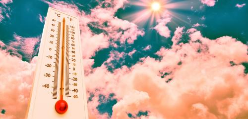 Climate Emergency CoP 25: World is hotter than ever before, says WMO