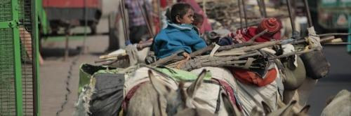 Experts believe that by 2050, more than 200 million people will be forced to leave their homes. Photo: Vikas Choudhary