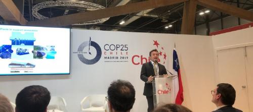 Climate Emergency CoP 25: What to expect from the second week