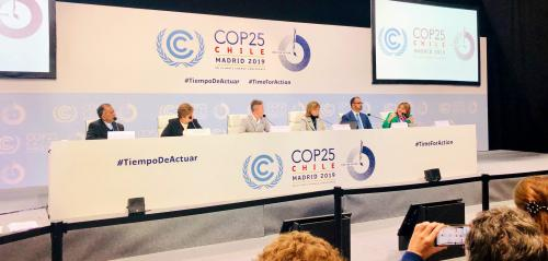 Climate Emergency CoP 25: Roadblock for Adaptation Fund