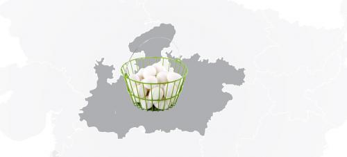 Madhya Pradesh's egg-centric problem: Choose between nutrition and hegemony
