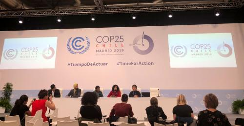Climate Emergency CoP 25: Loss and damage 'fighting out' in Madrid
