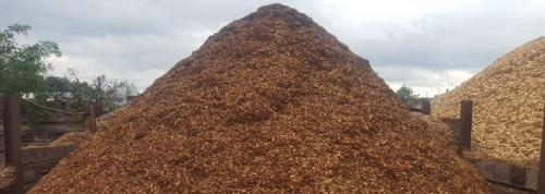 Europe's biomass problem