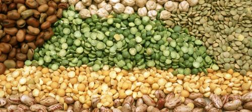 Pulses production in 2019-20 will reduce due to erratic monsoon: IPGA